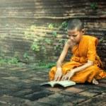 Young Novice reading book at Ayutthaya historical ...