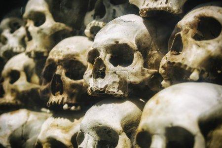 Real Human Skulls Stacked at Genocide Museum, Phnom Penh, Cambodia