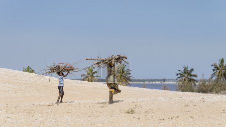 Malika, Senegal, July 31, 2014, Unidentified mother and son carrying filao branches on their head and walking in the dunes of the Retba Lake
