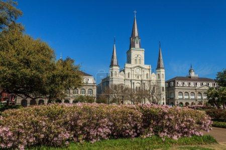 Photo pour Cathédrale Saint-Louis avec Azalées au premier plan . - image libre de droit