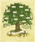 Genealogical tree on old paper background