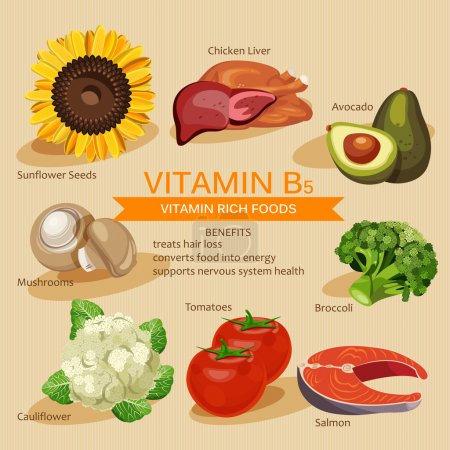 Vitamins and Minerals foods Illustration. Vector s...