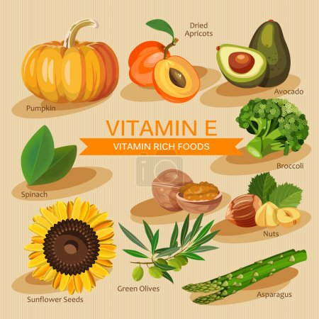 Groups of healthy fruit, vegetables, meat, fish and dairy products containing specific vitamins. Vitamin E.