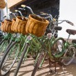 Постер, плакат: Row of parked vintage bicycles bikes for rent on sidewalk Green mint color