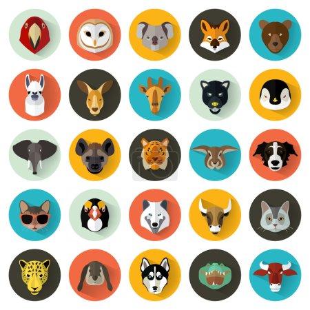 Animals Portrait Set