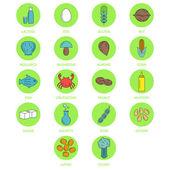 Set di allergeni alimentari tipici