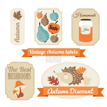 Set of vintage autumn fall labels, tags, stickers, vector