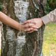 Holding hands: couple in love embracing a tree.