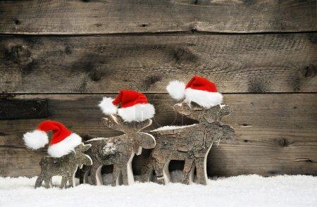 Three reindeer wearing santa hats on brown wooden background.