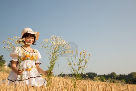 Young happy girl walking in a wheat field and picks flowers.
