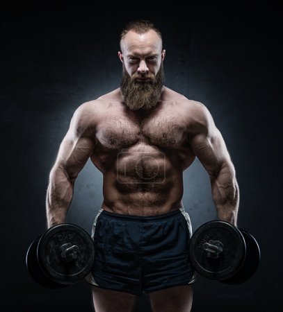 Bearded Muscular bodybuilder posing with heavy dumbbells