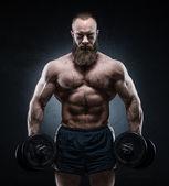 Bearded Muscular bodybuilder posing with heavy dumbbells
