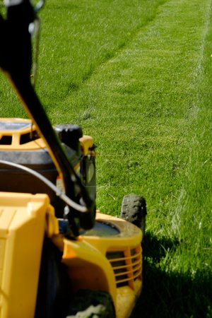 Photo for Yellow lawn mower on the green grass. Caring for a garden. Shallow depth of field. Focus on grass. - Royalty Free Image
