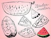 Watermelon 05 A