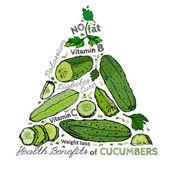 Hand Drawn Cucumber 03 A