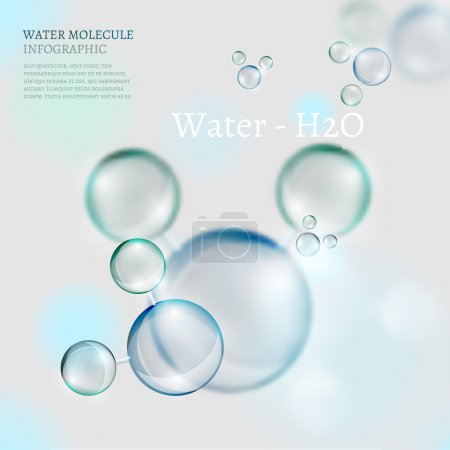 Illustration for The illustration of bio infographics with water molecule in transparent style. Ecology and biochemistry concept. - Royalty Free Image