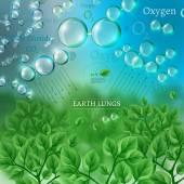03 Infographics Bio Tree