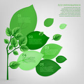 The illustration of beautiful bio infographics with leaves and tree Ecology concept Vector image