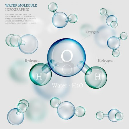 Illustration for The illustration of bio infographics background with water molecule in transparent style. Ecology, biology and biochemistry concept. Totally vector image. - Royalty Free Image