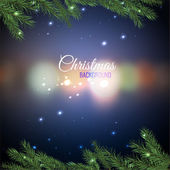 Vector illustration of christmas tree branches on a dark night bokeh background with blurred lights Beautiful decorative backdrop for New Year postcards posters prints and invitations