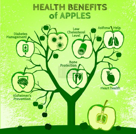 Illustration for Graphic vector illustration of  beautiful hand drawn infographics with apples health benefits on a textured background in fresh and juicy style. Fresh fruits for healthy life. Handmade concept. - Royalty Free Image