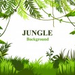 Summer background with jungle. green plants, folia...