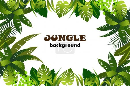 Illustration pour Jungle fond floral. cadre avec feuilles. illustration vectorielle . - image libre de droit