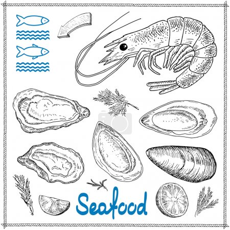 Illustration for Hand drawn seafood set of vector sketches. Vintage design with mussels, shells, oysters, shrimps illustration. Elements for menu bars and restaurants, banner, flyer, card. - Royalty Free Image