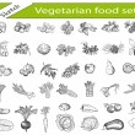Vegetarian food. hand drawing set of vector sketch...