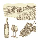 Wine vector set Hand drawn bottle of wine and vineyard