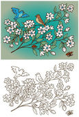 Hand drawing a pair of birds and branches with flowers