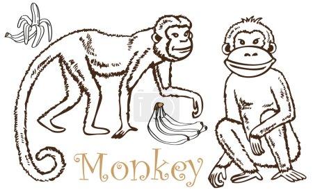Monkey and Bananas drawing