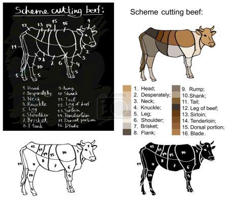 scheme cutting beef