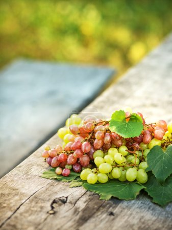 Ripe grapes on a wooden table