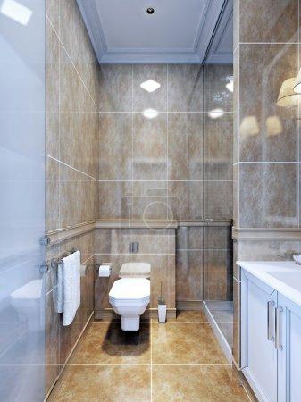 Idea of provence bathroom