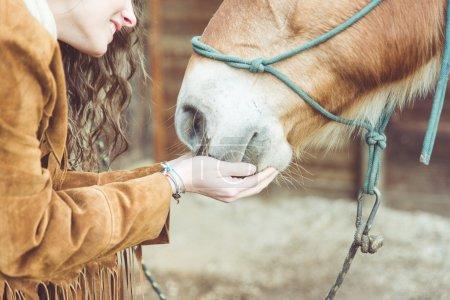 Photo pour Femme caressant son cheval. fermer sur les mains et la bouche du cheval. concept sur les animaux - image libre de droit