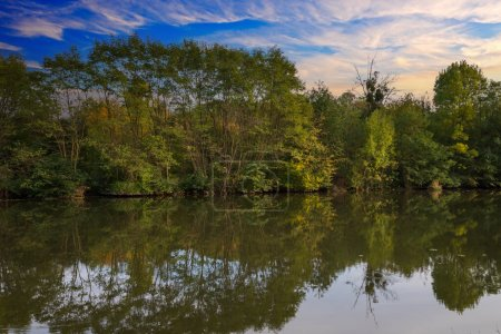 Landscape by the water. Stara Dyje river near Geno...