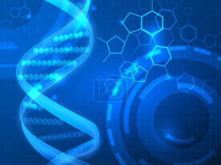 Illustration for DNA vector medical background, can be used for business, medical, science  presentation - Royalty Free Image