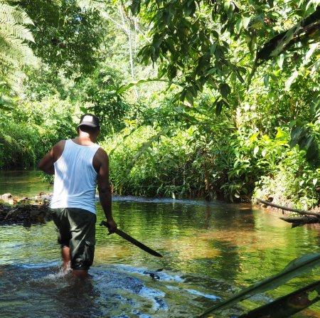 Homme avec machette travaille son chemin dans la jungle au Panama côtière