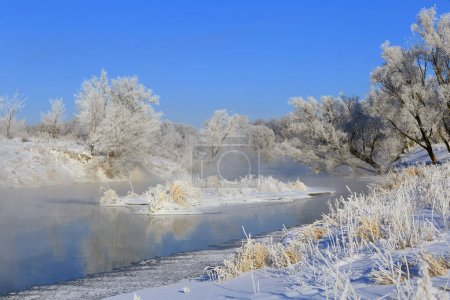 Photo for Foggy winter landscape frosty morning over the river and trees in hoarfrost on the shores of - Royalty Free Image