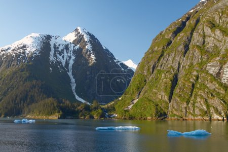 Landscape at Tracy Arm Fjords
