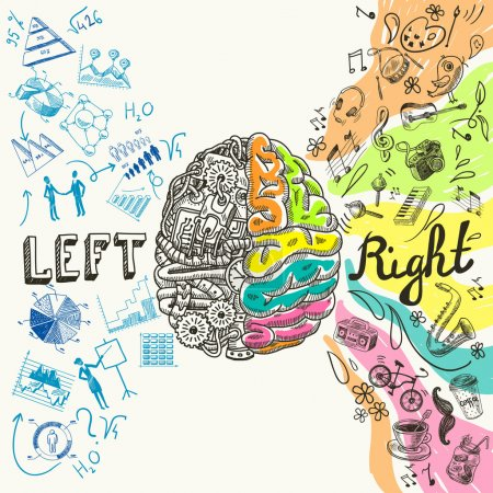 Illustration for Brain left analytical and right creative hemispheres sketch concept vector illustration - Royalty Free Image