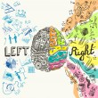 Brain left analytical and right creative hemispher...