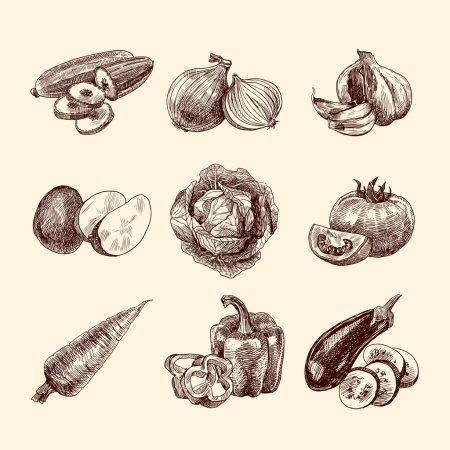 Vegetables sketch set