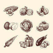 Vegetables sketch set