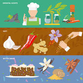Herbs and spices oriental scents pepper hot bitter sweet banner set isolated vector illustration
