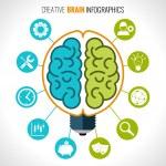 Creative brain infographics set with hemispheres i...