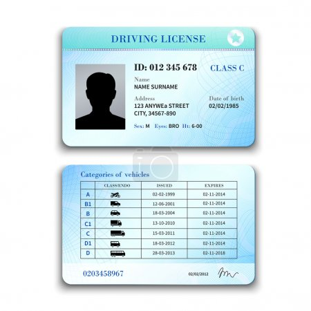 Realistic international plastic driver licence bac...