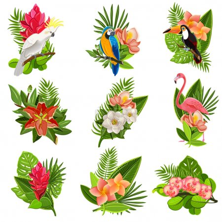 Illustration pour Collection d'icônes exotiques de fleurs tropicales et d'oiseaux avec de beaux arrangements de feuillage vert opulent illustration vectorielle isolée abstraite - image libre de droit