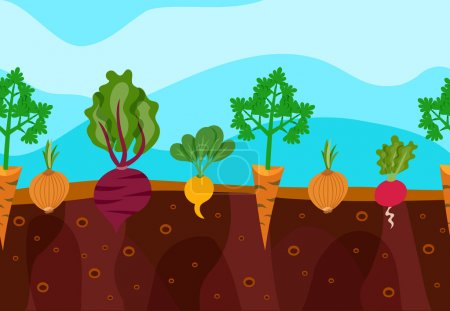 Illustration for Vegetables decorative icons set growing in garden soil vector illustration - Royalty Free Image